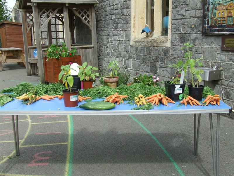 A small selection of veg grown by Eco Schools
