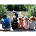 Early Years trip to Bay Pond (Surrey Wildlife)