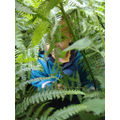 Hide and seek in Forest School
