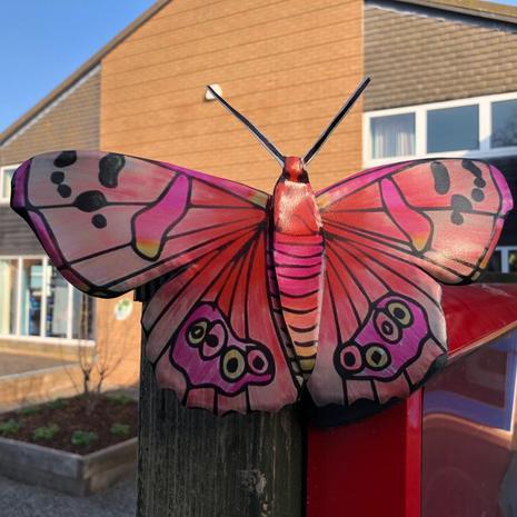 Zaire-Lei's butterfly