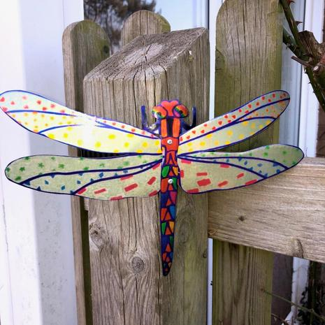 Zaire-Lei's dragonfly