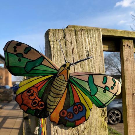 Fayrouz' butterfly