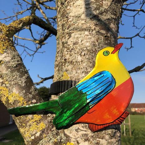 Dylan W's bird