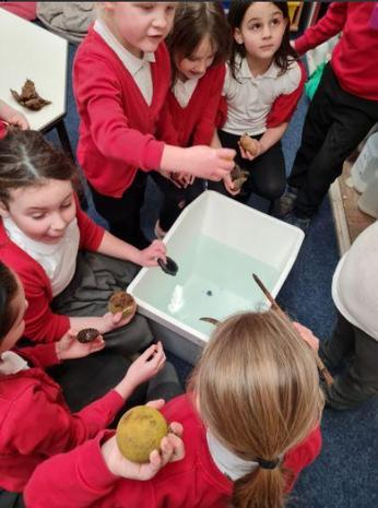 In Year Two the children investigated floating and sinking.