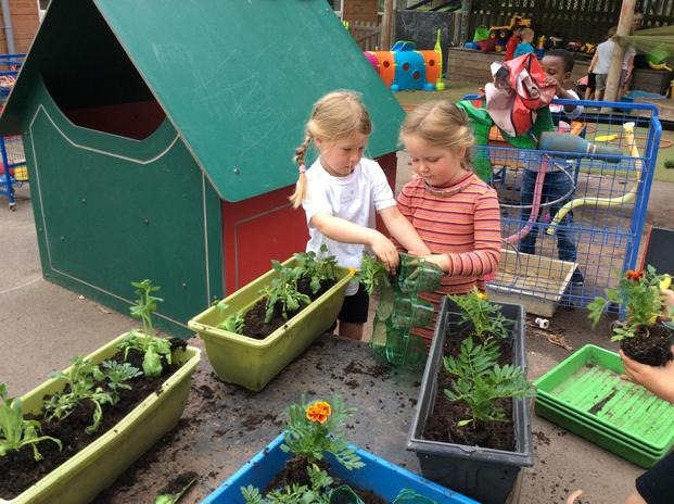 The children have been learning about how plants grow whilst tending to their garden.