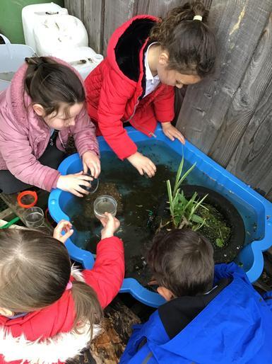 Exploring tadpoles