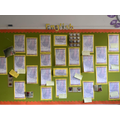Our English display - The children have written some excellent diaries!