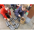 Counting buttons to match the dominoes