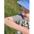 He was excited to find a ladybird!