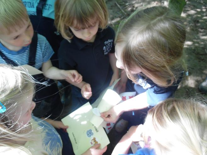 Checking our clues to find the bears.