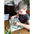 Tomas making a nature mandala.