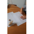 He enjoyed drawing a shell