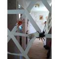 Tomas built a fabulous spider web!