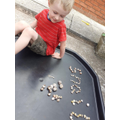Will found lots of snail shells!