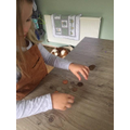 Eloise practiced recognising coins...