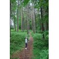 Tomas enjoying a forest walk.