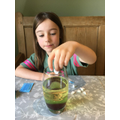 Flora's science experiment.