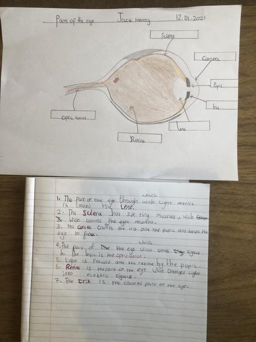 Jack's detailed eye diagram