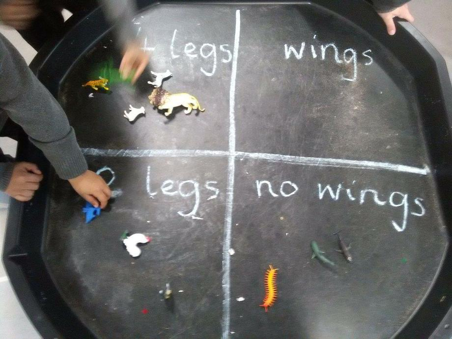 Sorting in reception class