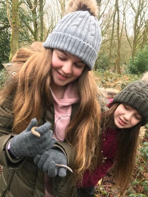 Evie's woodland discovery