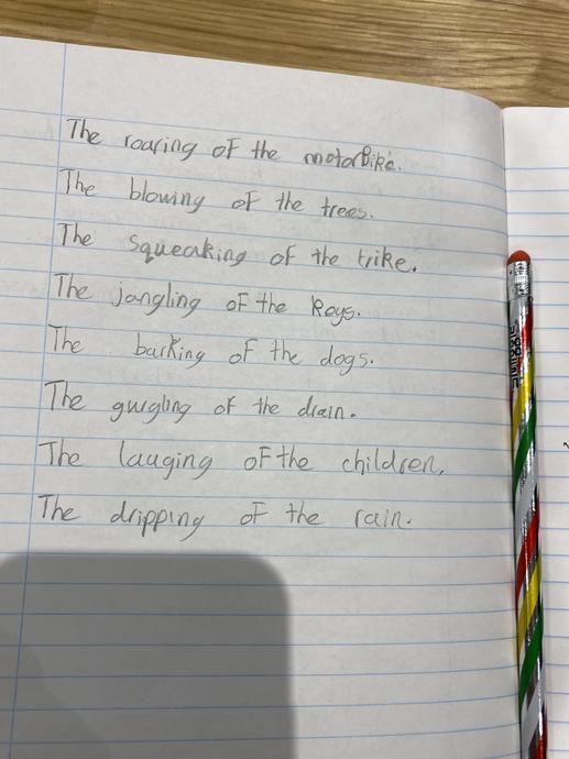 Freddie's amazing Sound Collector poem!