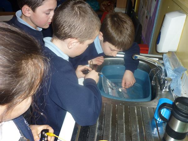 Evaluating sound levels in water