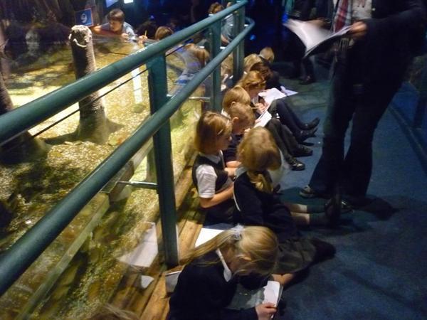 17 - Children completing quiz