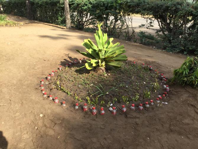 Decorative bottles outside school