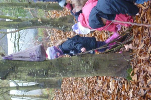 Our trip to Bishop's Wood