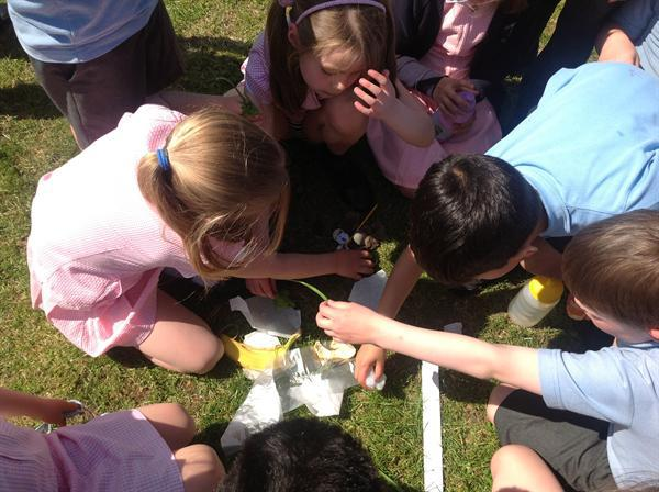 Year 2 picnic, eating our handmade sandwiches!