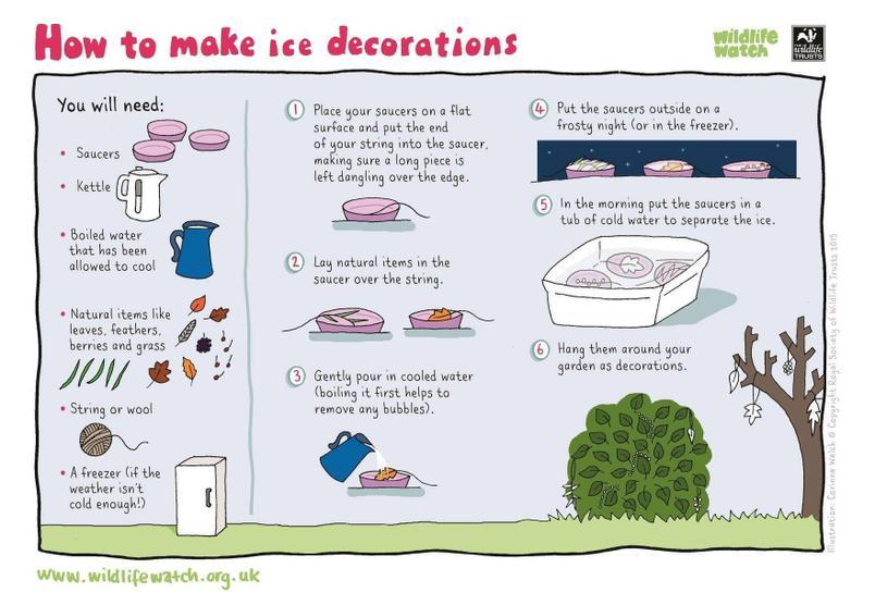Create some frozen garden decorations