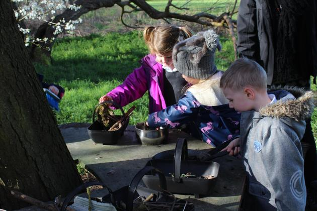 Forest School in Action