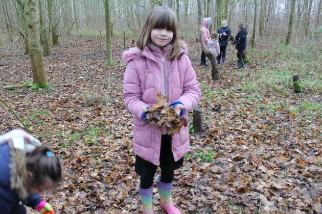 Looking for clues in the woods