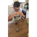 Home Science experiment