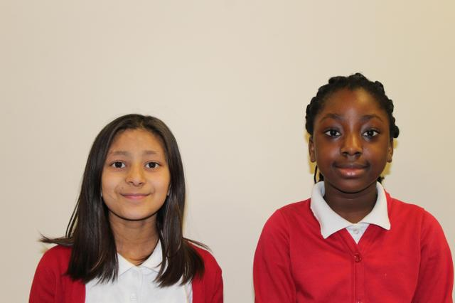 Class 17 School Council Representatives 2020