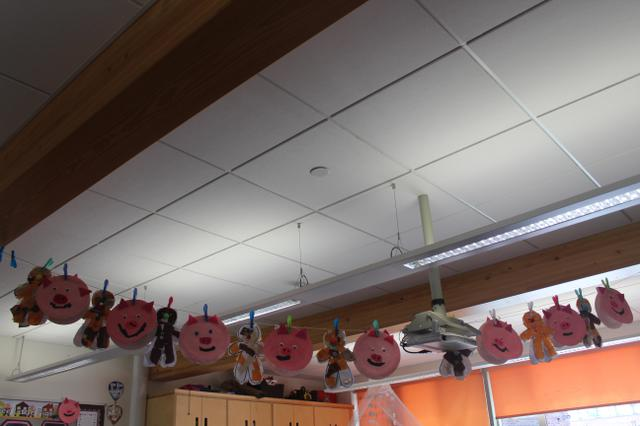 Class 3 Display Summer