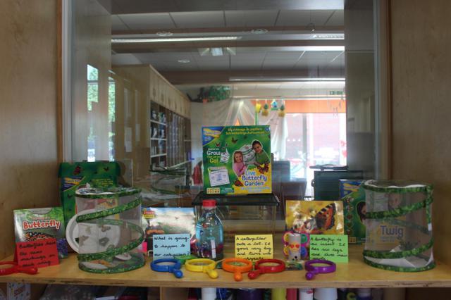 Class 1 Display Summer
