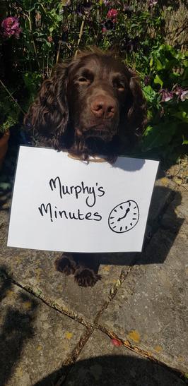 Y5/6 Murphy's Minutes