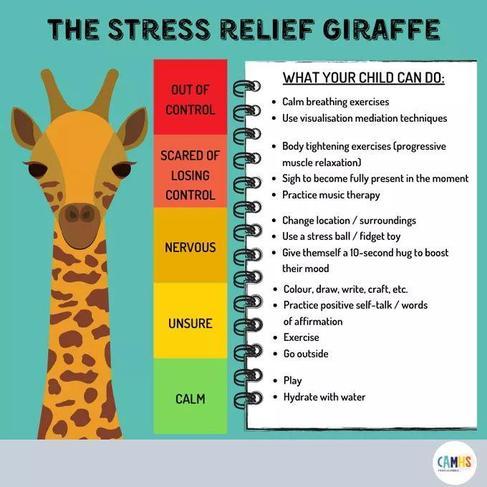 The Stress Relief Giraffe