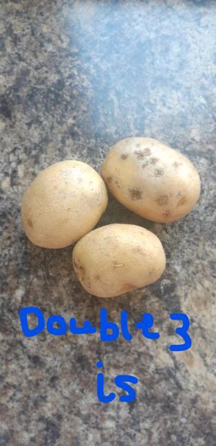 Double 3 is.....