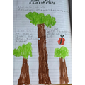Alfie's rainforest poster
