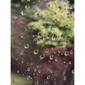 Some great water droplets in the foreground - Liv