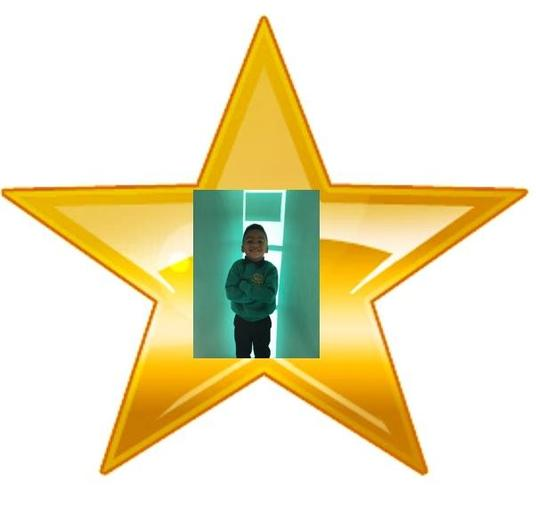 Ladybird Star of the Week 9.10.20