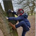 Oscar's PE - Natures Climbing frame