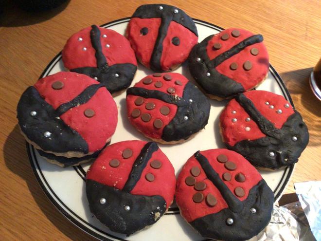 Doubling ladybird biscuits