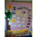 Escape to the Seaside Display