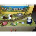 Even Max's snowman made it to the nature table!
