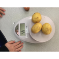Weighing vegetables
