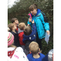 Super vegetable hunt at forest school