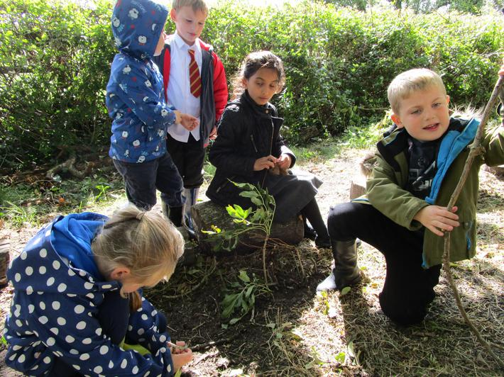 Working together to build mini shelters